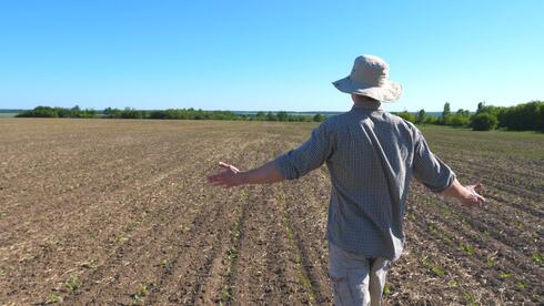 """הנתונים מספרים סיפור עצוב. """"החקלאות הישראלית המפוארת נמצאת בתהליך גסיסה מתקדם"""" צילום המחשה: שאטרסטוק"""