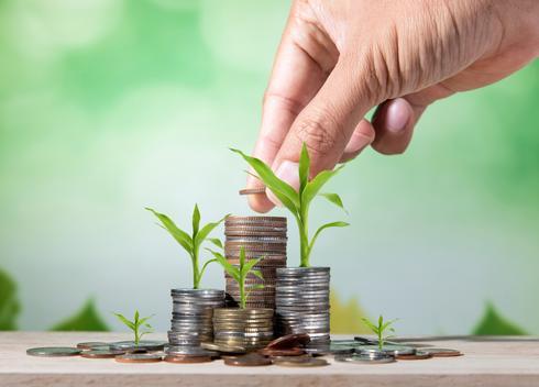 לצמצם הוצאות, להגדיל הכנסות