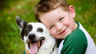 כלבים וילדים