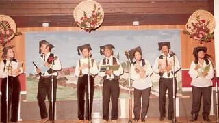 להקת הצרעטרון