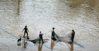היקף מכירות של 200 מיליון שקלים. מגדלי דגים, צילום: אסף סולומון