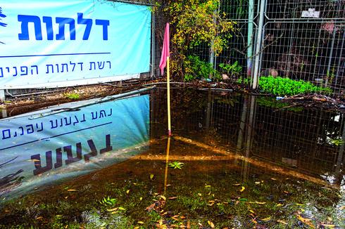 דגל קרן שטבע בתוך שלולית ענק | צילום: יואב דודקביץ'