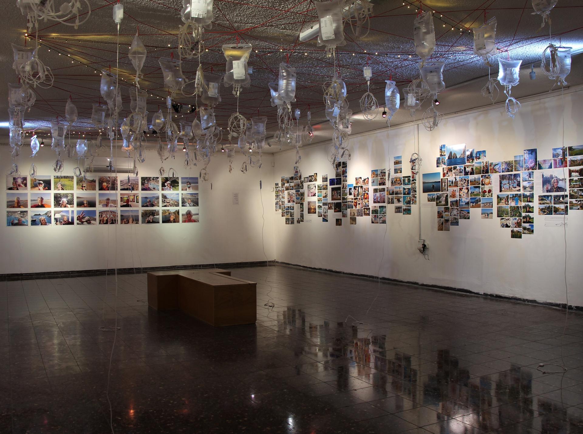 התערוכה. שקיות אינפוזיה מהתקרה | צילום: רונן ברייר